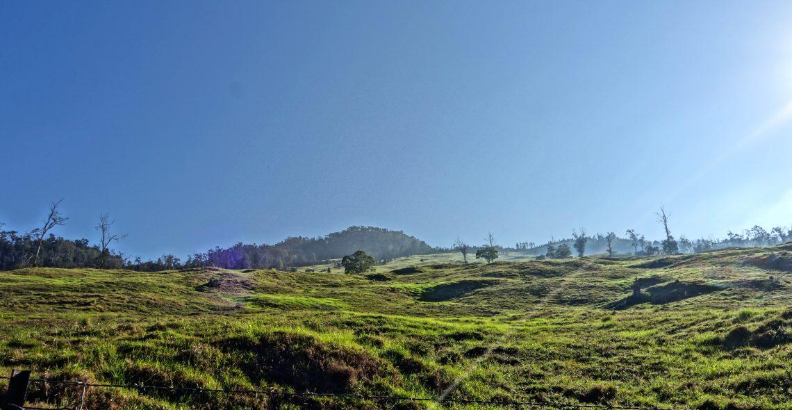 Pasture Lands / Cloud Forest