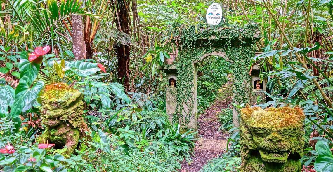 Threshold / Cloud Forest Sanctuary